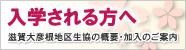 110202_newcomer_bn.jpg